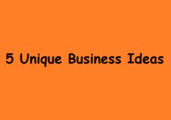 5 Unique Business Ideas For Bangladesh