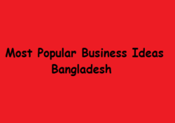 Most popular Business Ideas in Bangladesh