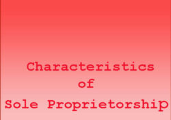 Characteristics of Sole Proprietorship Business Form
